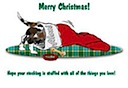 Houla in stocking Christmas Card